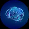 MHI_brain_icon.png